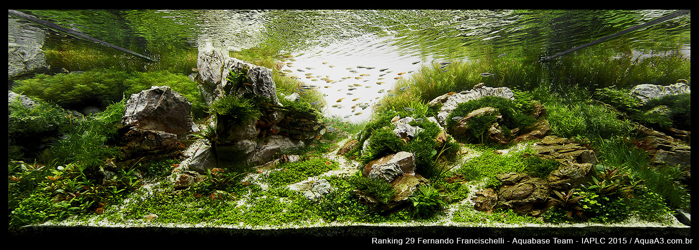 Ranking 29 Fernando Francischelli - IAPLC 2015