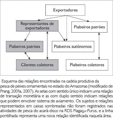 categorias dos piabeiros de peixes ornamentais e sua rede de relacionamento