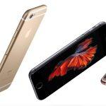 Novos Iphones agradam aquarista • Novos iPhones agradam aquaristas com imagens de Betta splendens
