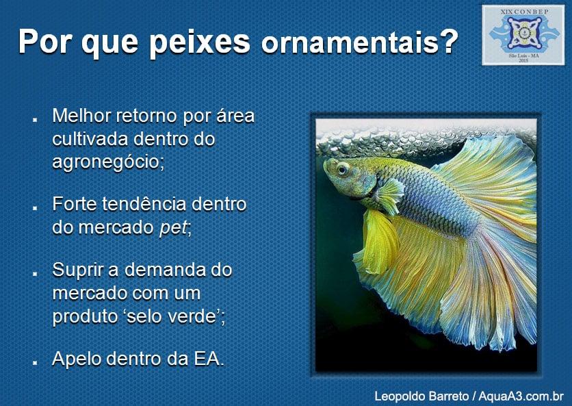 A necessidade dos peixes ornamentais