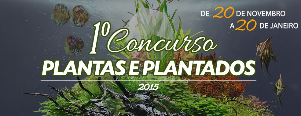 1º Concurso Plantas & Plantados 2015