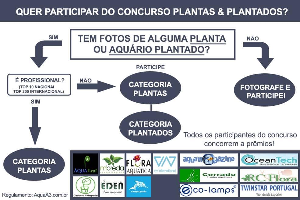 Participe do concurso Plantas e Plantados