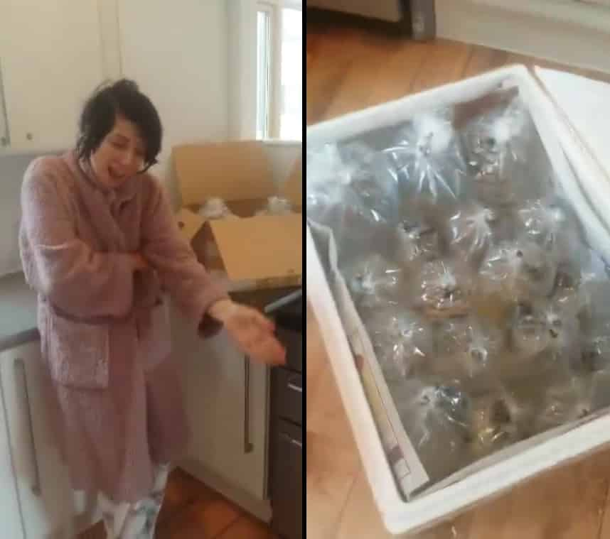 Vídeo Mulher recebe por engano 150 peixes