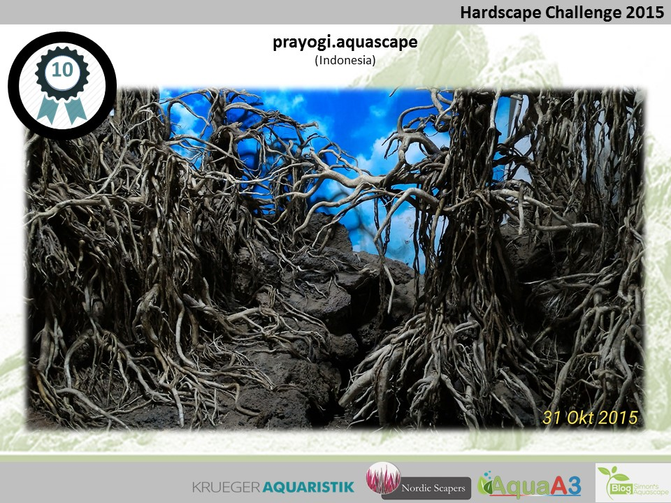 10 rank Prayogi Aquascape - NSHC 2015