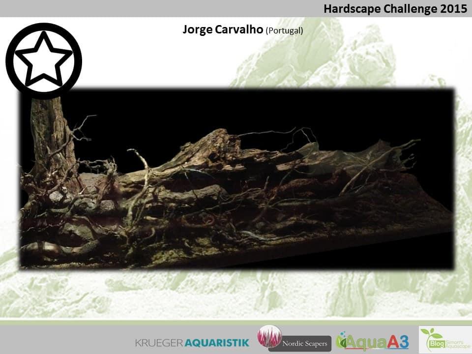 105 rank Jorge Carvalho - NSHC 2015
