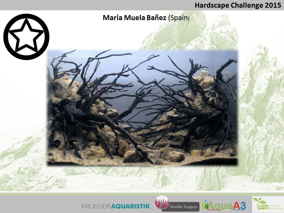 131 rank Maria Muela Bañez - NSHC 2015