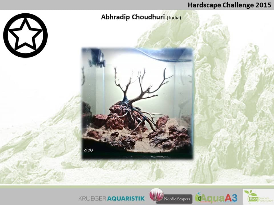 144 rank Abhradip Choudhuri - NSHC 2015