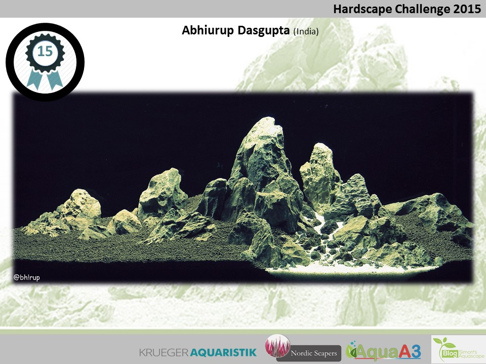 15 rank Abhirup Dasgupta - NSHC 2015
