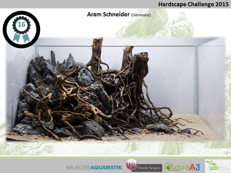 16 rank Aram Schneider - NSHC 2015