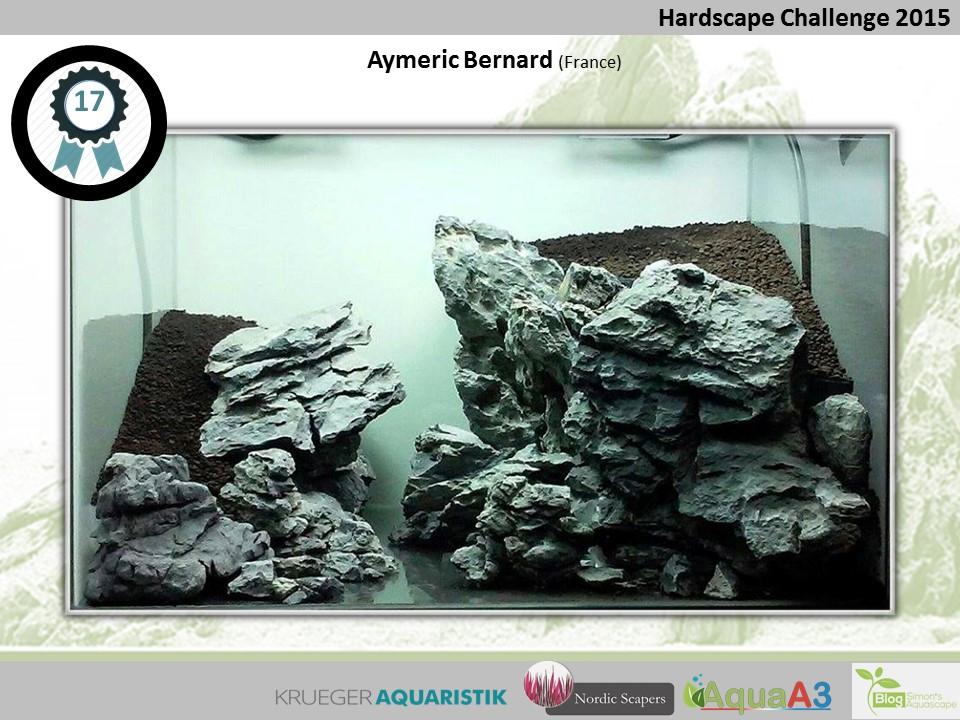 17 rank Aymeric Bernard - NSHC 2015