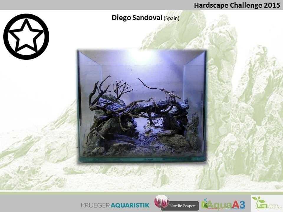 45 rank Diego Sandoval - NSHC 2015