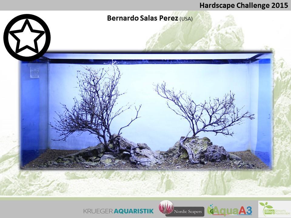 90 rank Bernardo Salas Perez - NSHC 2015