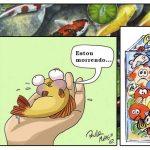 O estresse nos peixes • Sobre o estresse nos peixes ornamentais