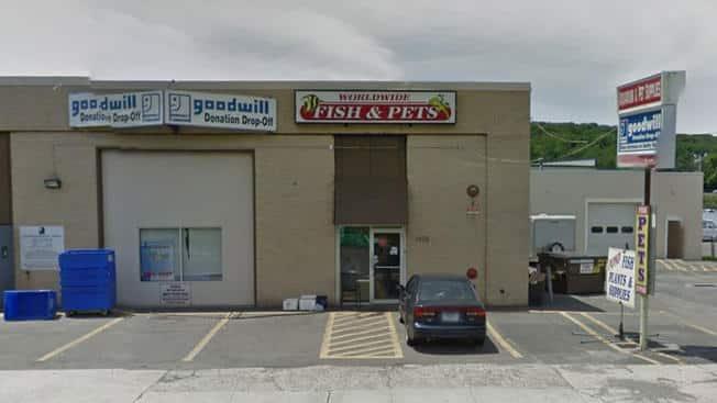 essa • Polícia flagra boate ilegal em antiga loja de aquários
