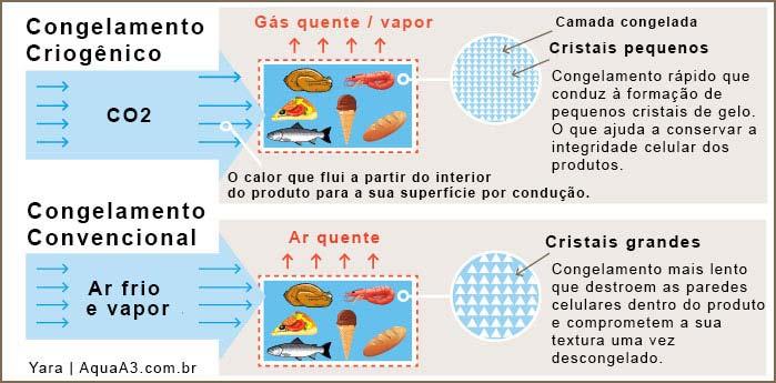 Diferença entre Congelamento Convencional e Congelamento Criogenico