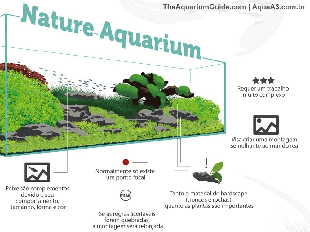 Estilo nature aquarium no aquapaisagismo