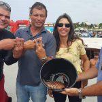 Peixe Leao e encontrado em Arraial do Cabo • Peixe-Leão é encontrado em Arraial do Cabo