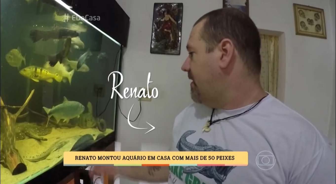 Renato Moterani explica sobre cuidados necessários para se manter um aquário