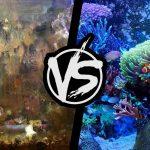 O aquarista e o torturador de peixe • Você realmente é aquarista ou falso aquarista?