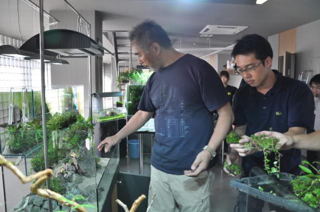 Takashi Amano utilizando wabi kusa