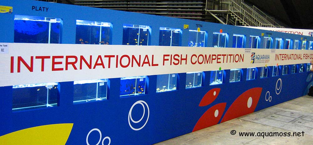 Aquarama International Fish Competition