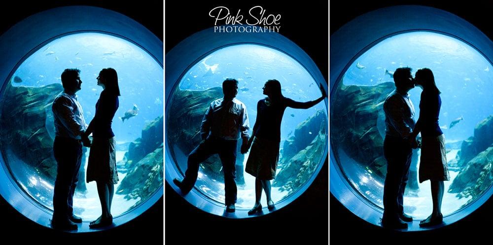 Casal-em-aquário