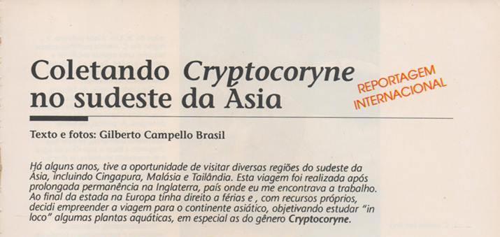 Coletando Cryptocoryne no sudeste da Ásia