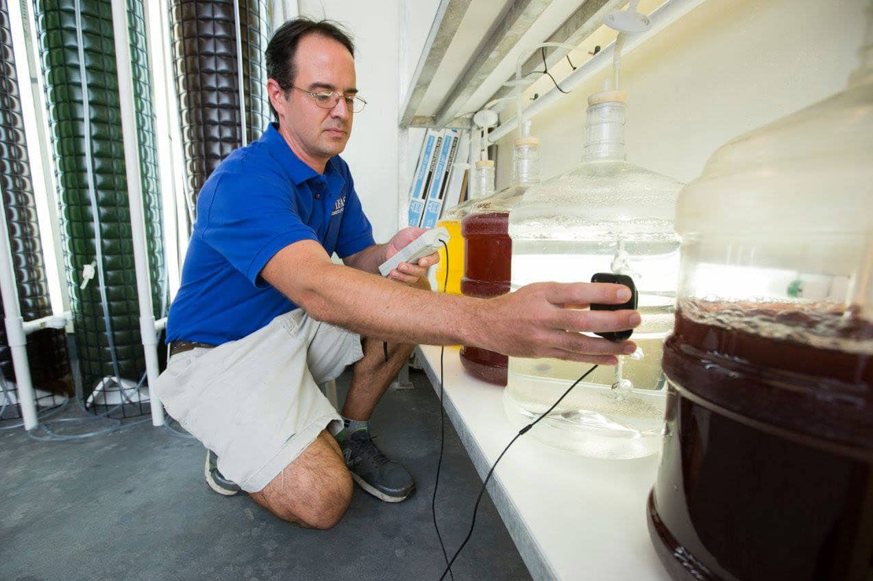 Eric Cassiano da UF Tropical Aquaculture Laboratory
