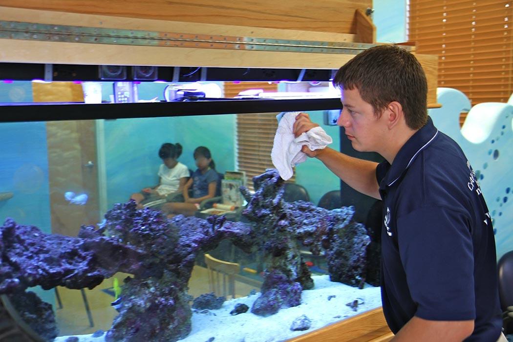 Manutenção no aquário marinho