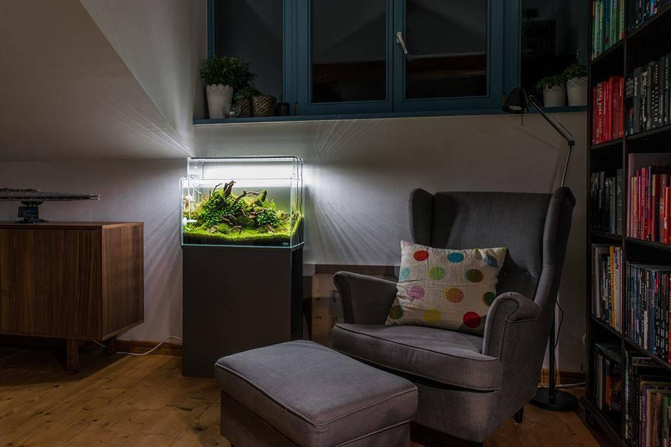 aquário na sala