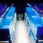 Baterias da loja Aquaristika • Convite: Inauguração da loja Aquaristika