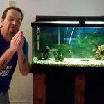 Como lidar com os riscos no aquarismo • Como lidar com os riscos no aquarismo