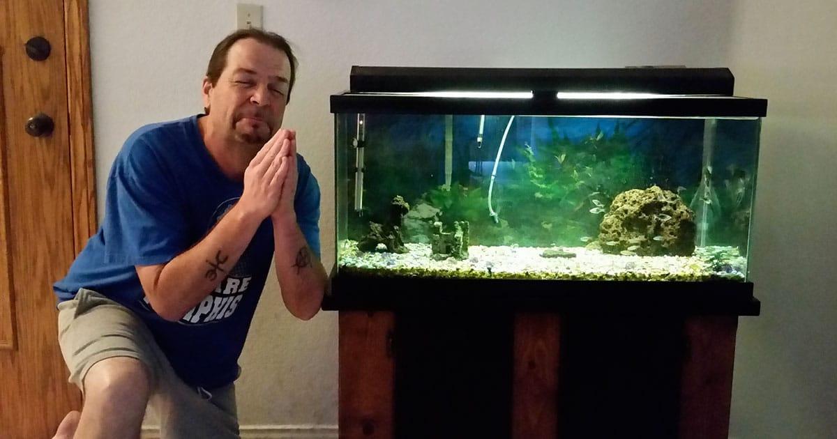 Como lidar com os riscos no aquarismo