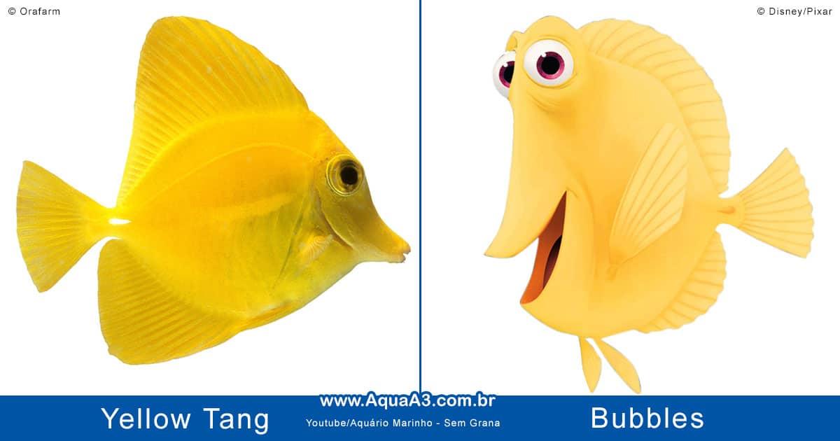 Bubbles é o Yellow Tang (Zebrasoma flavescens)