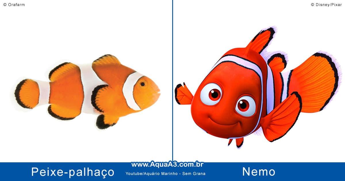 Nemo e o peixe-palhaço