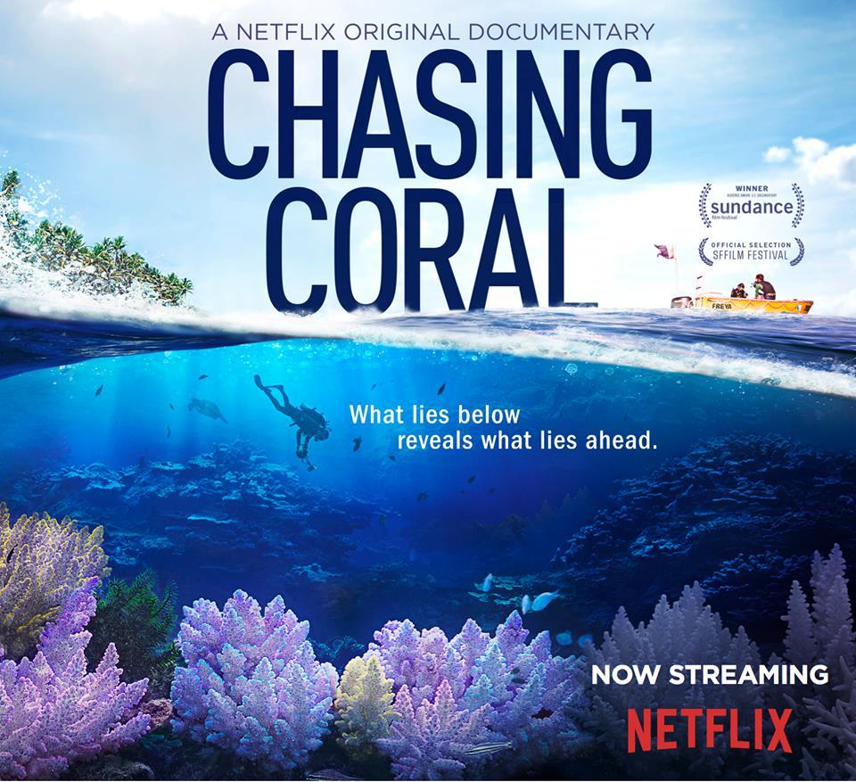 Chasing Coral - Em busca dos corais
