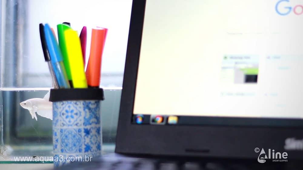 Transformando pote de ração em porta canetas