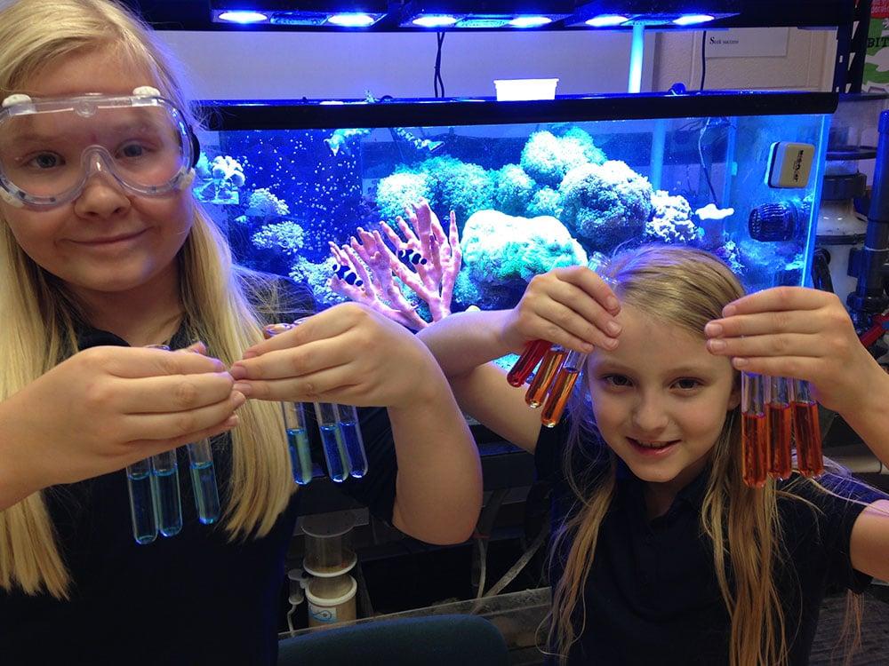 Testes de aquário