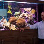 Aquarium Flora e Fauna em Curitiba • Aquarismo: a falência do hobby no Brasil?