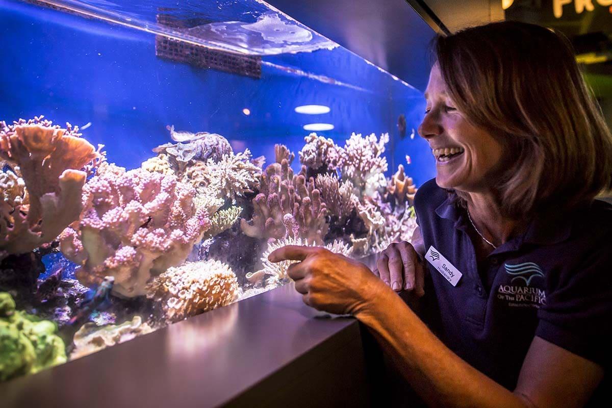 médico veterinário aquário
