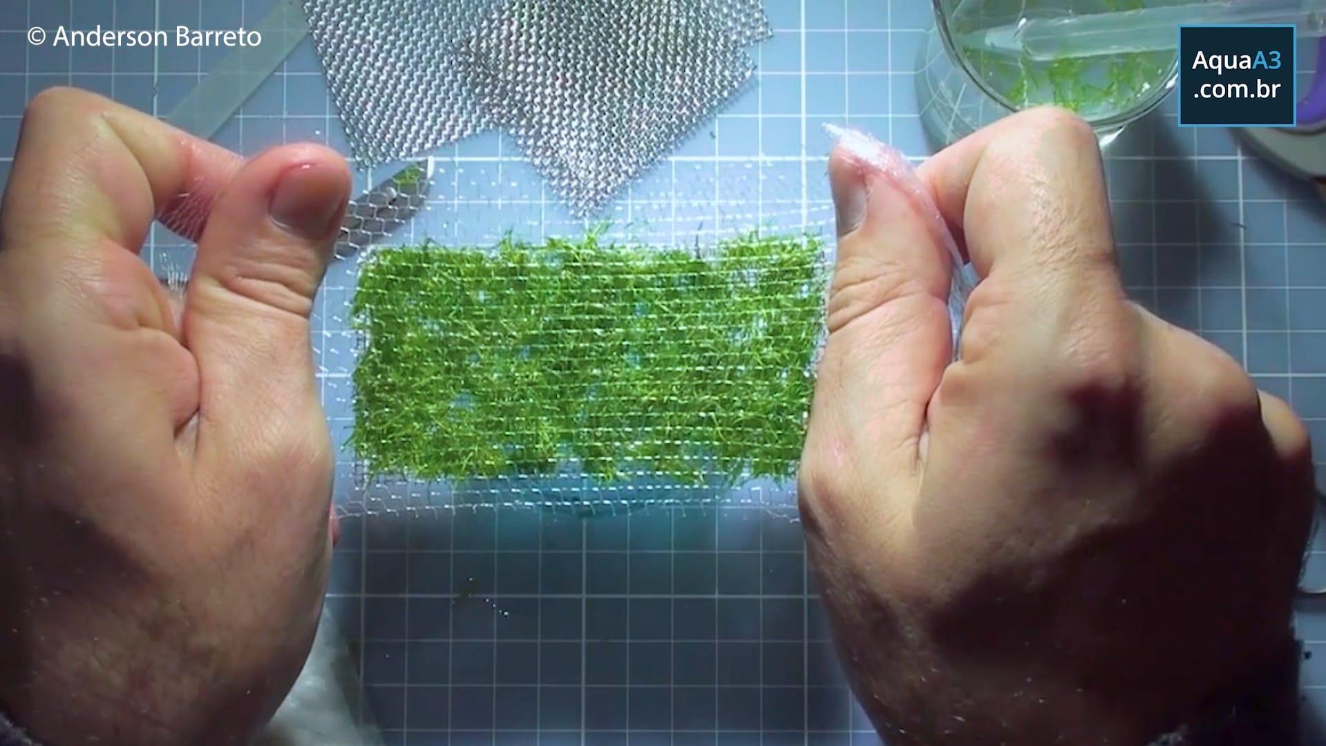 """Estique a rede nylon para que ela possa ser """"encaixada"""" na tela inox"""