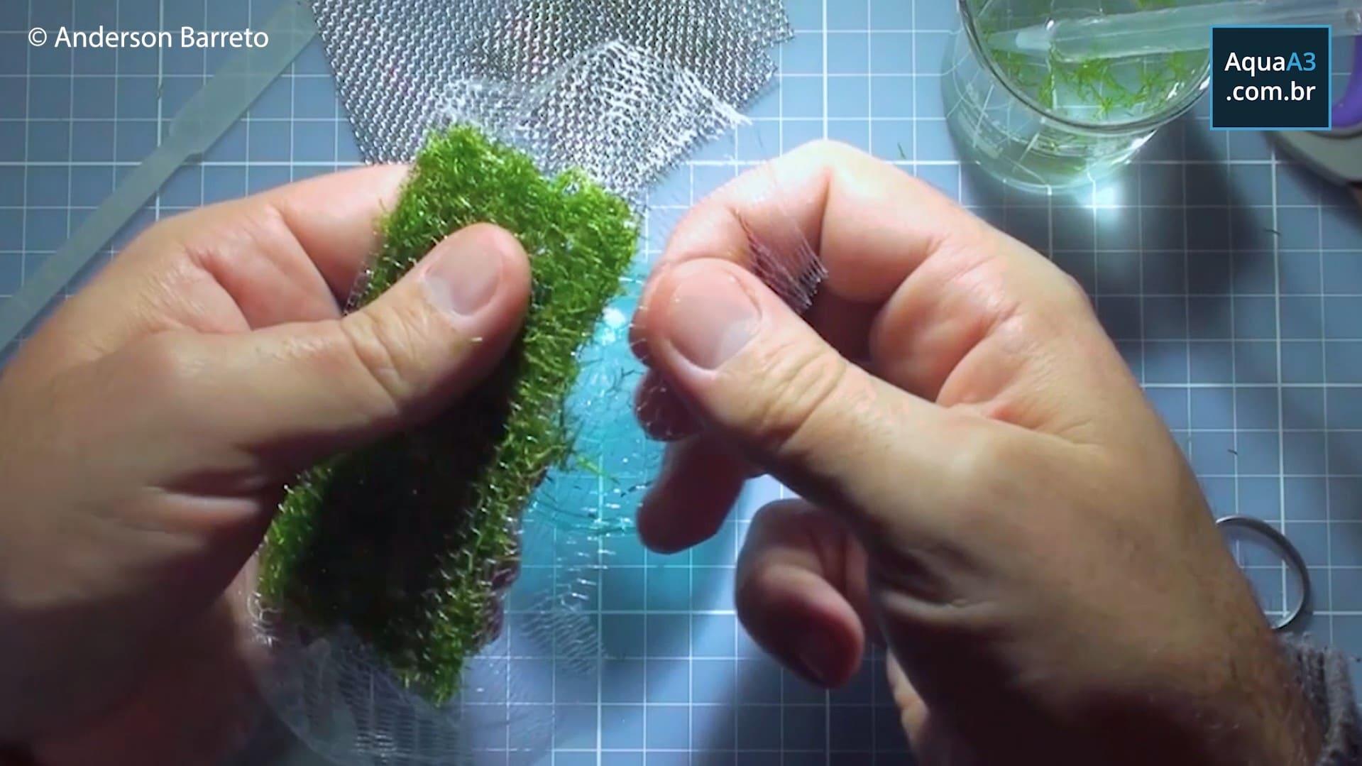 Encaixe a rede nylon nas bordas da tela inox, não precisa de cola para isso!