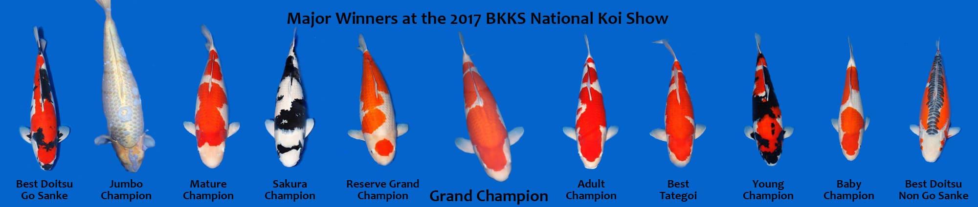 Vencedores da competição de Koi do Reino Unido.