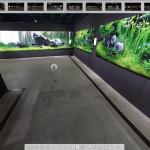 Nature Aquarium takashi amano Exhibition • Faça um tour virtual na exposição Nature Aquarium de Takashi Amano