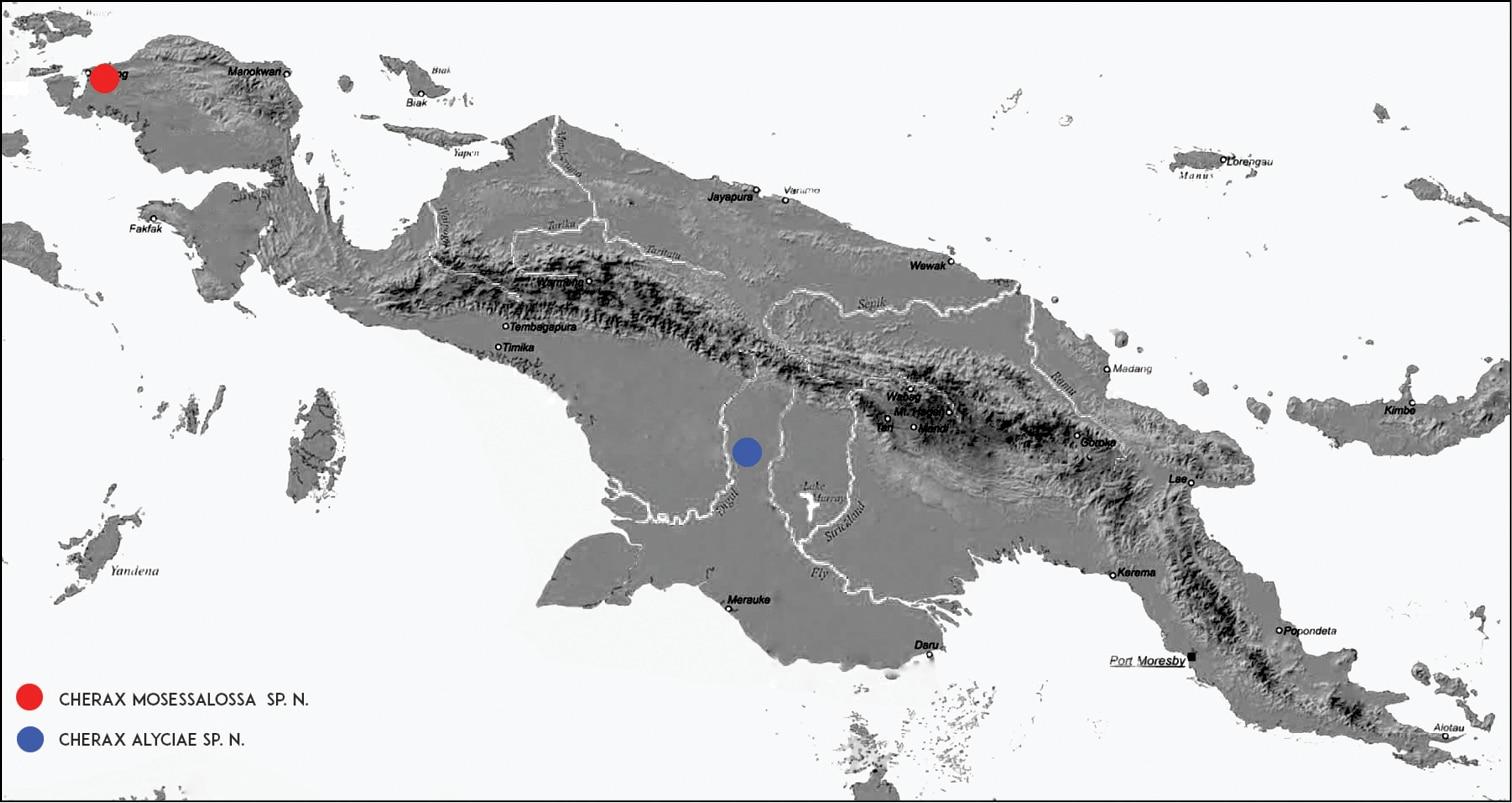 Mapa da Nova Guiné e as localizações onde as espécimes foram encontradas.