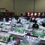 concurso AquaJaya Challenge • Brasileiro é destaque em evento internacional de aquapaisagismo