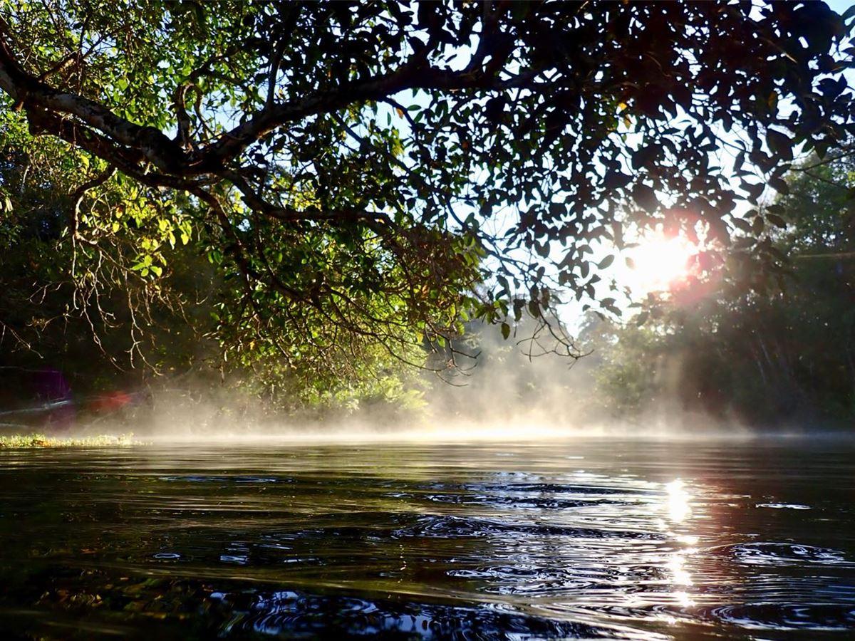Rio Olho D'Água