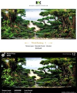 Tereza Lazar Fairytale Forest