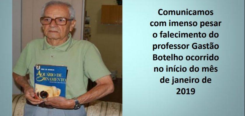 Gastão Botelho