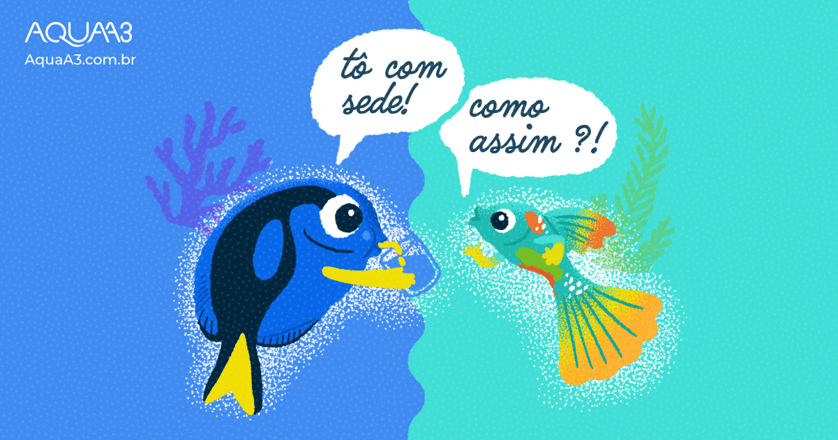 Se já vivem dentro dá água, será que peixes bebem água?